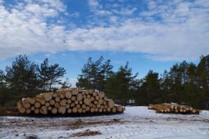 Trävaror
